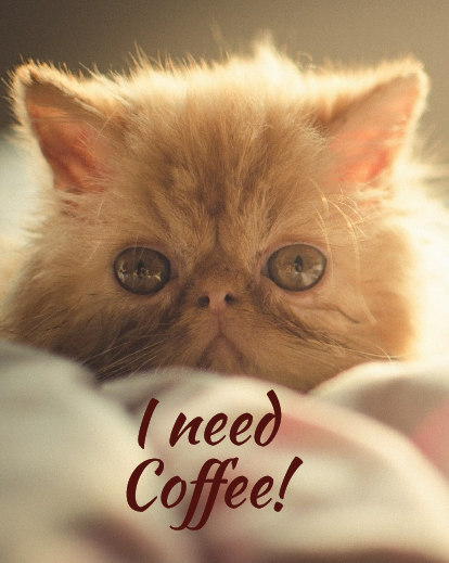 I need coffee sleepy cat