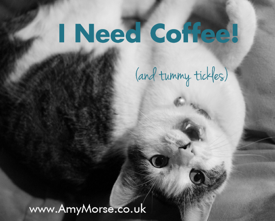 Coffee kitty 3