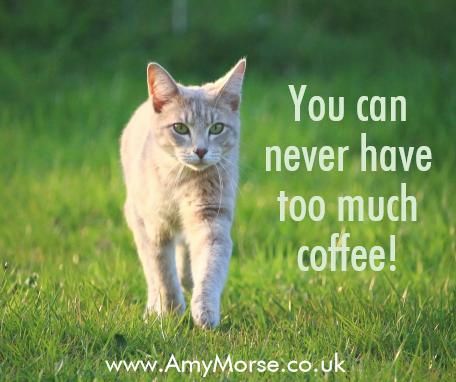 coffee kitty 4