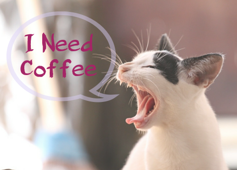 i need coffee kitty