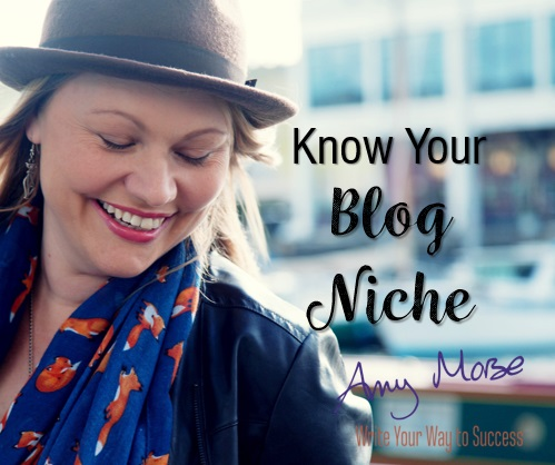 Know your blog niche webinar