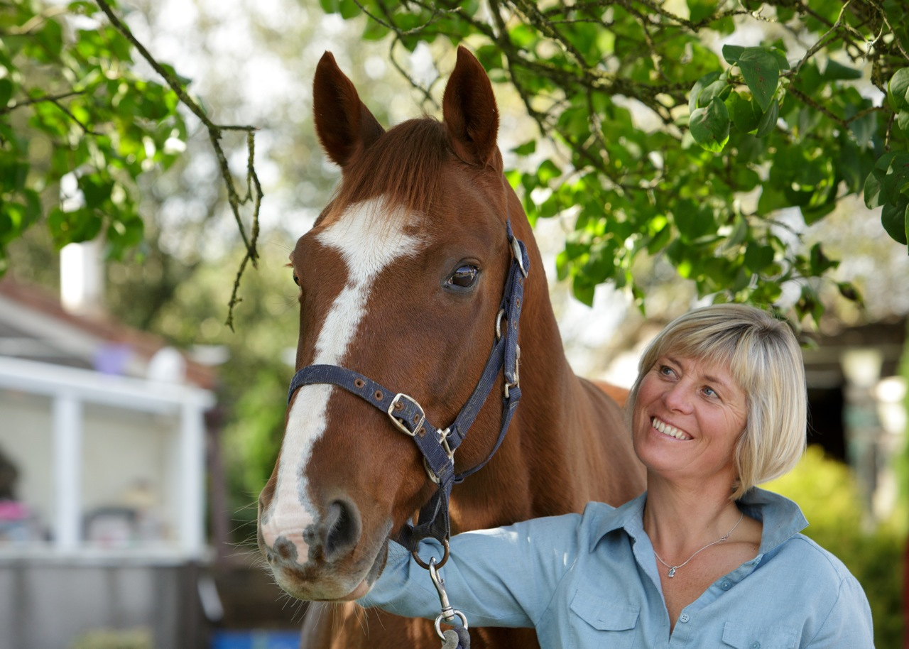 Rosie Withey Horses As Teachers Equine Facilitated coaching