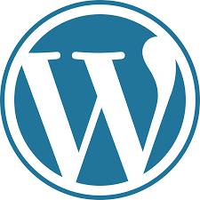 Write your blog on WordPress