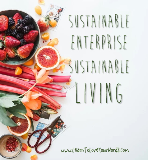 sustainable enterprise sustainable living