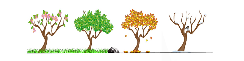Sustainability through the seasons - self sufficiency